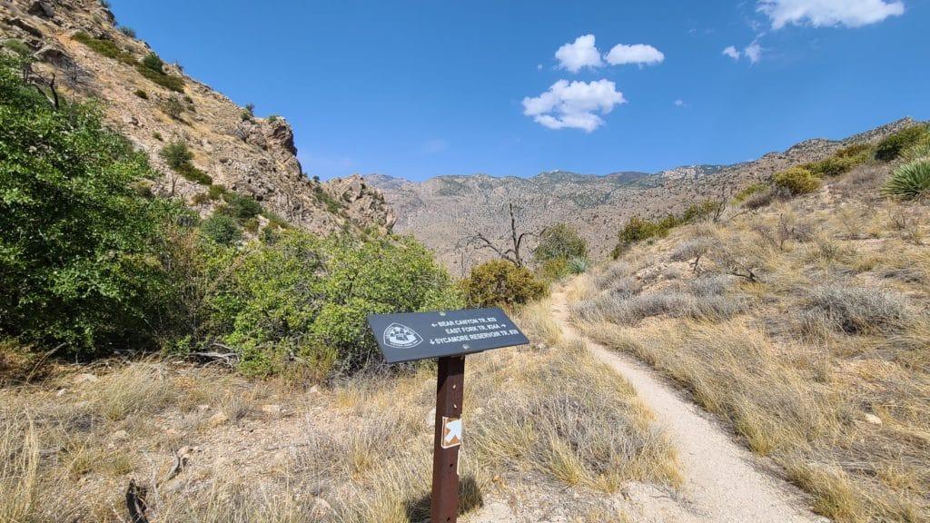 BCL Bear Canyon Trail