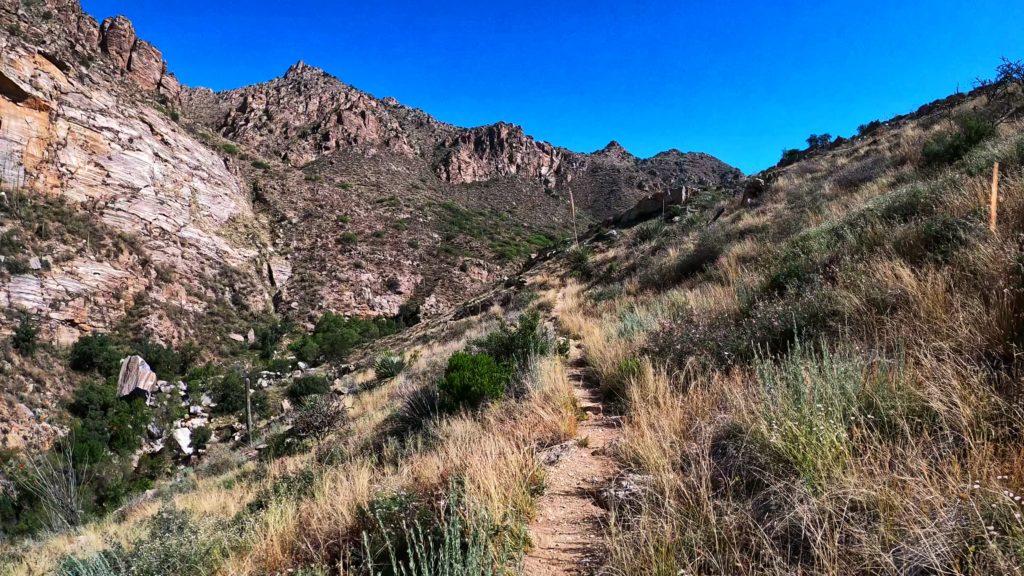 Bear Canyon Loop | Bear Canyon Trail